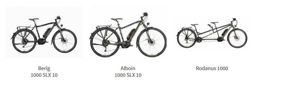 trekking-e-bike
